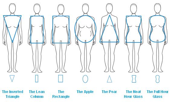 Body Shape Themuseflash
